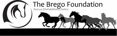 The Brego Foundation
